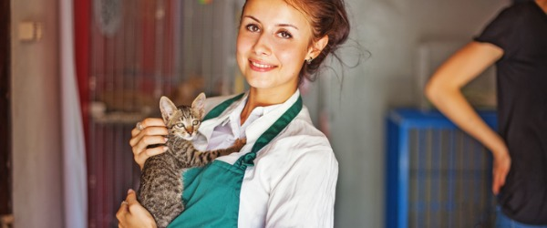 What does a Pet Adoption Counselor do?
