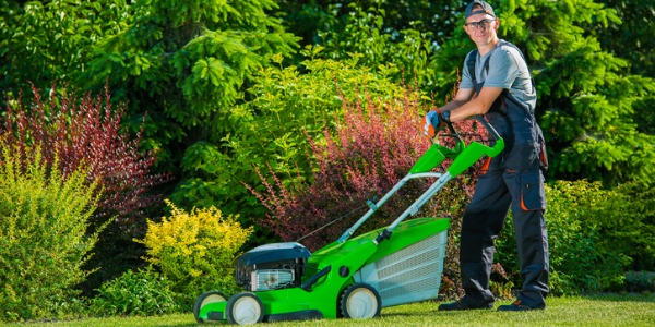 A lawn care specialist will mow grass, seed lawns, apply fertilizer and pest control, and trim hedges and trees.