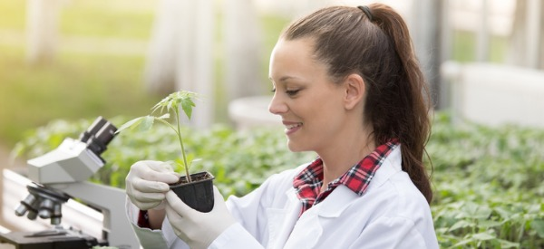 A horticulturist is someone who uses scientific knowledge to cultivate and propagate plants, and then uses this knowledge to provide technical information to fruit, vegetable and flower growers as well as farmers.