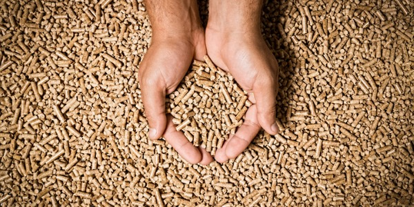 Biomass plant technicians calculate and load biomass feedback and often report on the quality of the feedstock, making reports on the daily data.