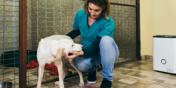 One of the perks of being an animal control worker is being able to supply personal care to the animals. This includes feeding, watering and giving the animals some one-on-one attention.