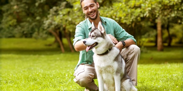 An animal behavioural specialist can diagnose behavioural problems of family pets, rehabilitate rescued dogs, cats, or horses, and aid in scientific research.