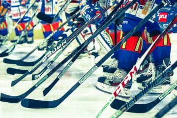 Berufung der ZSC Lions im Fall Fredrik Pettersson