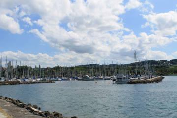 Estavayer-le-Lac FR - Mann tot aufgefunden