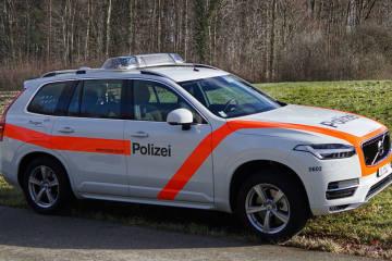 Romanshorn TG - Pfanne auf Herd vergessen