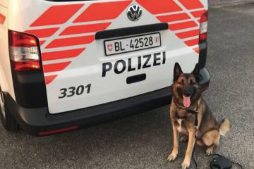 Basel-Landschaft BL - Die Polizei  am Sissacher Herbstmarkt