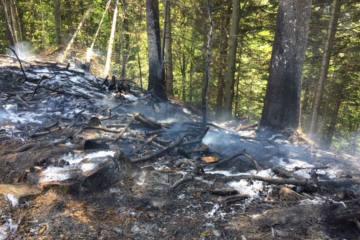 Escholzmatt-Marbach LU - Flurbrand nahe des Waldes - Zeugenaufruf