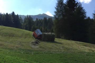 Vaz/Obervaz GR - Heuladewagen kippt – Landwirt hat Glück