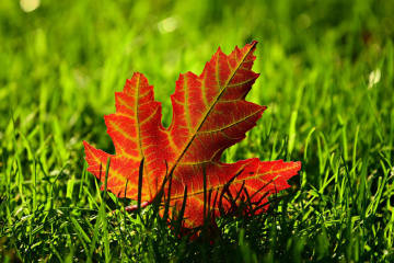 Die ersten Herbststürme im Anmarsch
