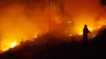 Waldbrand auf dem Churer Rosenhügel erfolgreich bekämpft