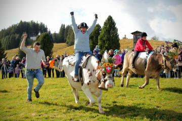 Alpchäsmarkt und Kuhrennen am Flumserberg