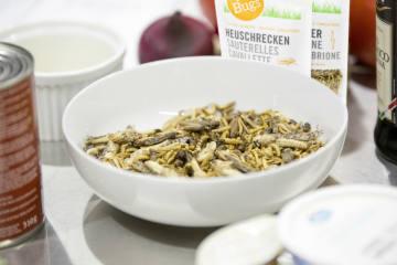 Insekten sind ab sofort auch in der Migros erhältlich