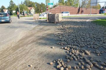 Widnau SG - Anhänger kippt um - Kartoffeln auf Fahrbahn ausgeleert
