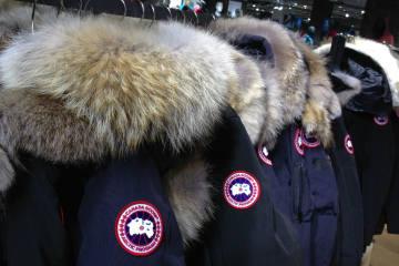 Zürcher Tierschutz hat Jelmoli beim Pelz-Ausstieg unterstützt