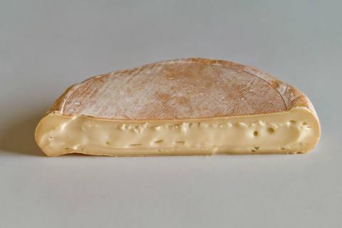 Bakterien im Rohmilchkäse Reblochon de Savoie lait...