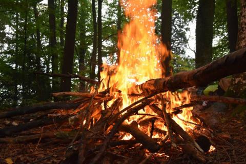 Pollegio TI - (Update) Waldbrand in der Leventina