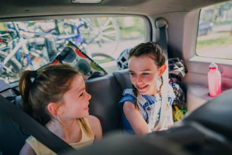 Mit Kindern und Hund im Auto kühlen Kopf bewahren