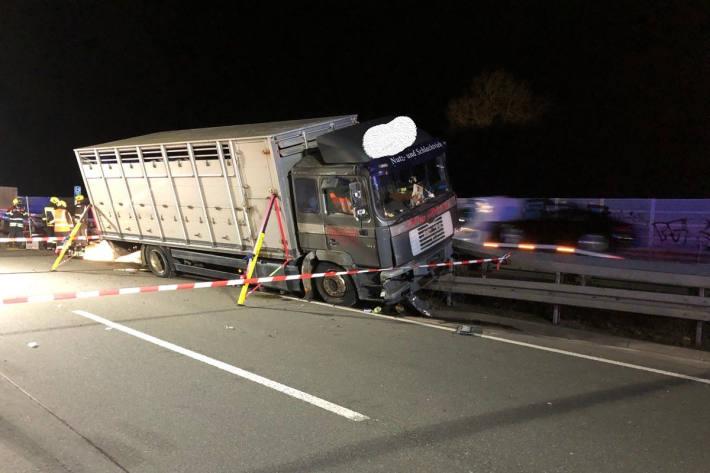 Unfall mit Viehtransporter auf der A33 bei Paderborn-Sennelager