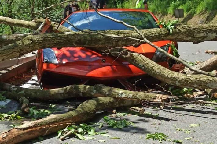 Baum stoppt Sportwagen in Stubenbergklamm