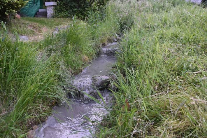 In Eschenbach SG ist gestern Zement in einen Bach gelangt.