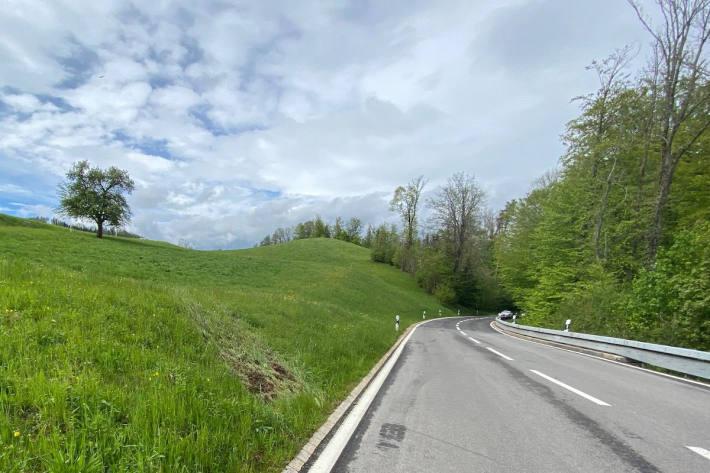 Unfallfahrer verursacht Flurschaden bei Langnau am Albis