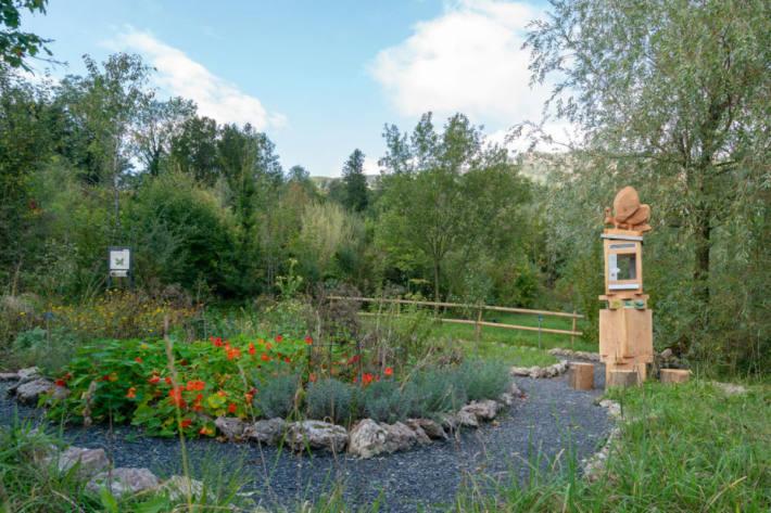 Der Schmetterlingsgarten ist der zweite Teil des Insektenpfades.