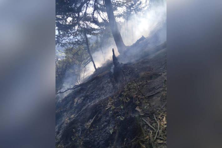 Flurbrand in unwegsamen Gelände