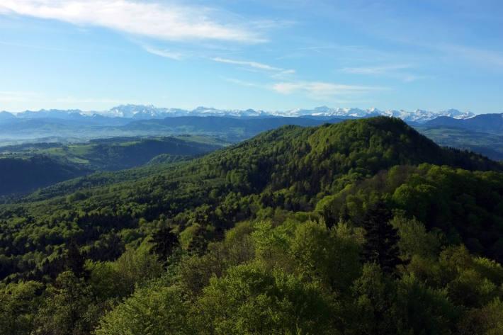 Naturerlebnispark Wildnispark Zürich Sihlwald