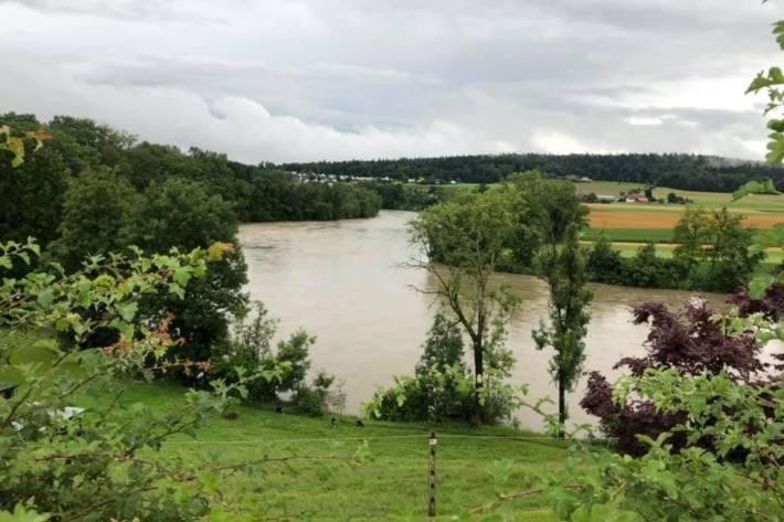 Die Aare bei Wolfwil SO ist sehr gestiegen.