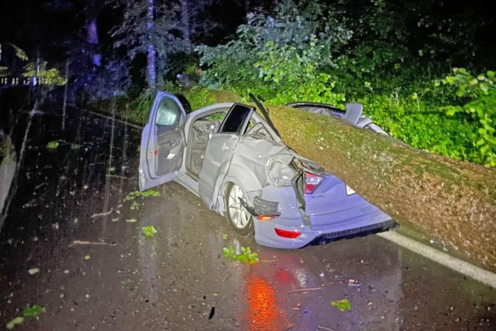 Durch den Aufprall des tonnenschweren Baums wurde die Fahrgastzelle des Autos eingedrückt. Der Fahrzeug erlitt Totalschaden.