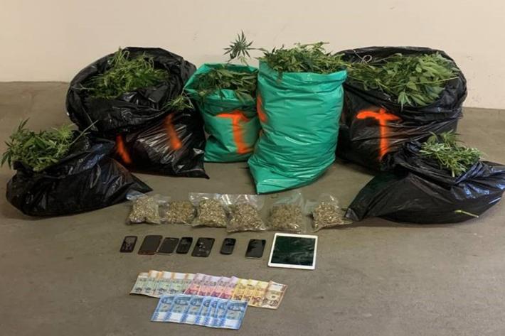 Cannabisindooranlage in Hardegg sichergestellt