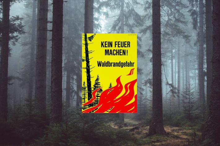 Im Kanton Aargau ist die Waldbrandgefahr gross.