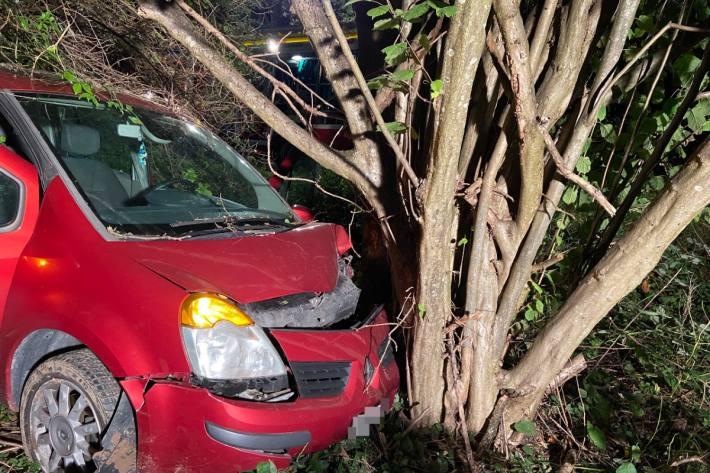 Beim Unfall verletzte sich der Fahrer.