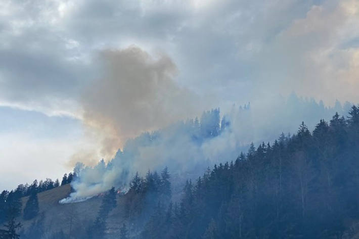 Waldbrand in Crésuz