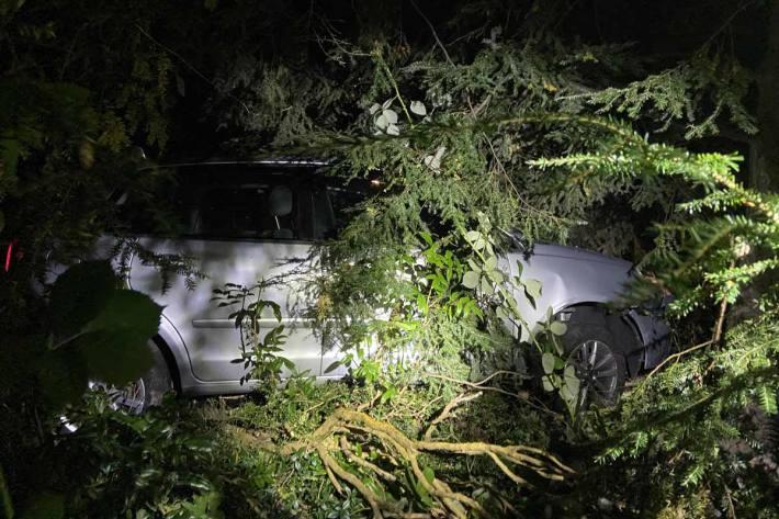 Ein 17-jähriger Autolenker verlor die Herrschaft über seinen Wagen