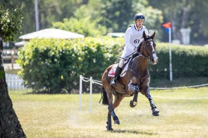 Schweizer Pferd muss eingeschläfert werden