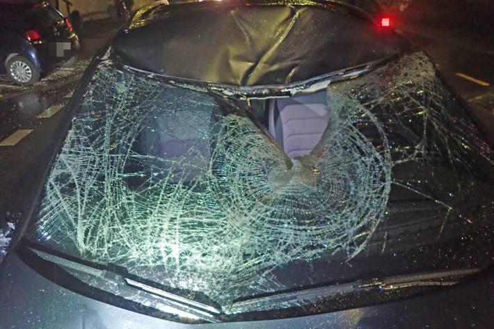 Durch den Aufprall mit dem Auto wurde das Pferd schwer verletzt.