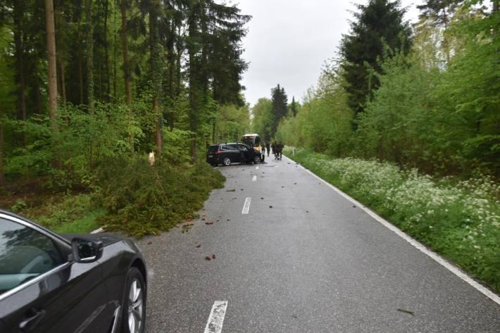 In Boningen SO kollidierte ein Auto mit einem Baum.