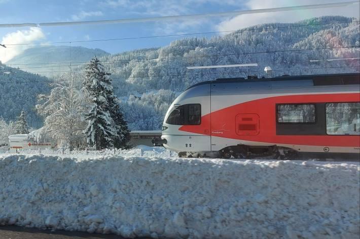 Der Lokführer alarmierte in Seewen die Feuerwehr und die rund 40 Passagiere verliessen den Zug (Symbolbild)