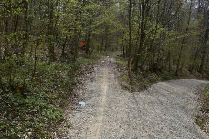 Mountainbiker verunfallt und schwer verletzt in Rafz