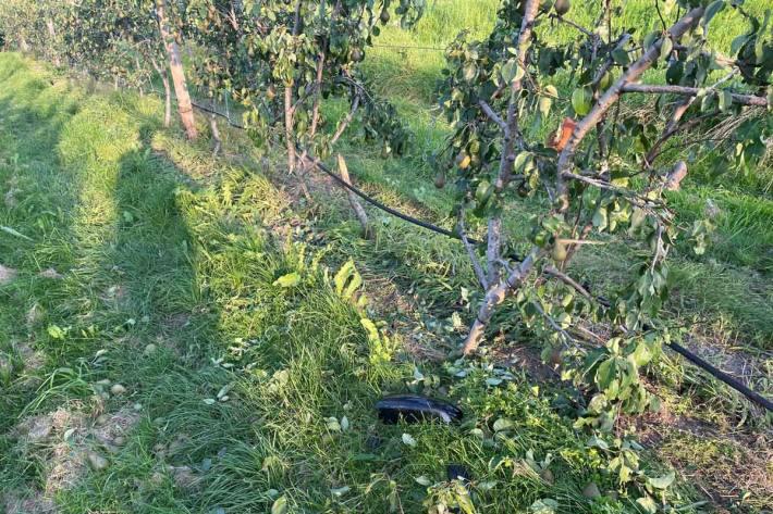 Die Unfallverursacherin wurde in Eschenz nicht verletzt