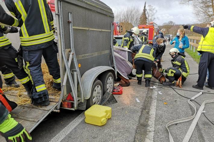 Dülmen – Das gestürzte Pferd befand sich in einer misslichen Lage