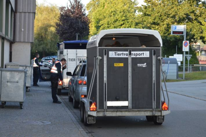 In Herisau AR wurden gestern Tiertransporter von der Polizei kontrolliert.