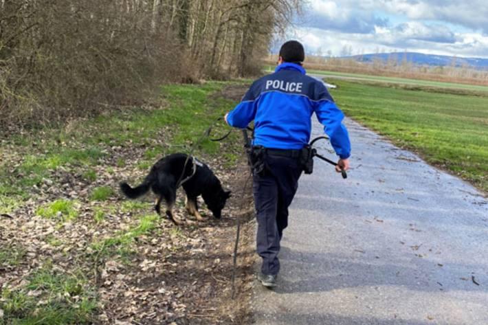 Dank Polizeihund konnten in Chénenes FR zwei Einbrecherinnen aufgespürt werden.