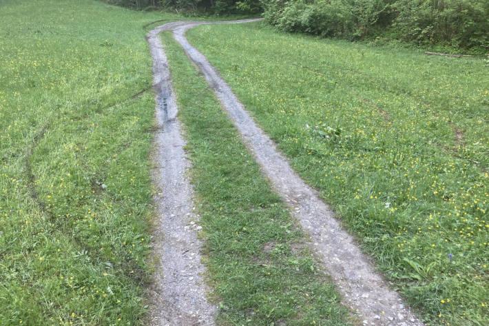 Unfallspuren auf der Waldstrasse bei Netstal
