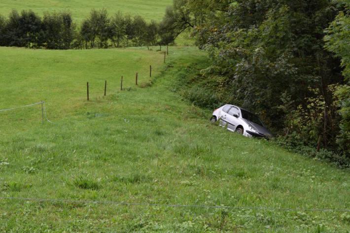 Alkoholisiert durch Zaun gebrochen und bei Speicher AR über Wiese gefahren