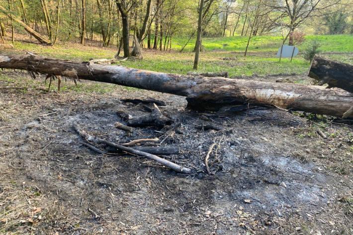 Waldbrand bei Gränichen AG