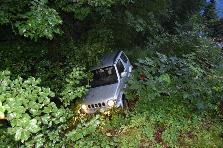 Das Auto landete im Wald.