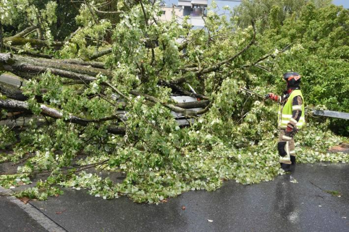 Die junge Autolenkerin konnte das Fahrzeug unverletzt verlassen.