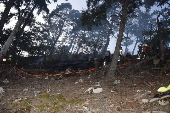 Waldbrand erfordert Feuerwehreinsatz bei Mümliswil SO